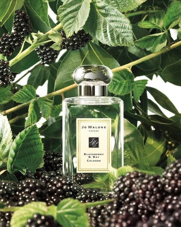 Joo-Mallone blackberry & bay cologne 100ml